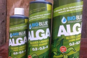 ALGA fertilizer